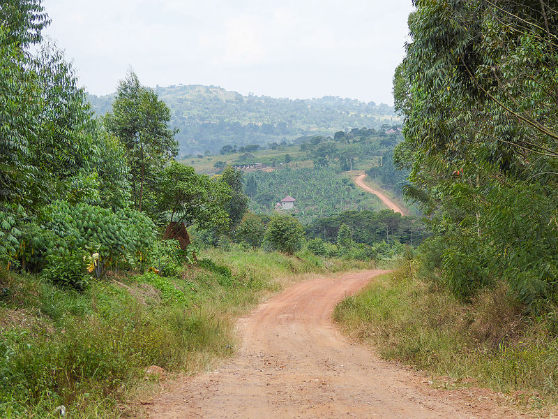 800px-The_road_in_Mbazzi,_Mpigi_district_in_Uganda_01